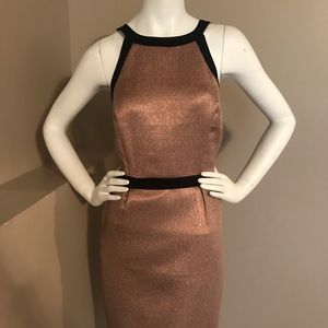 The Limited Rose Gold Dress